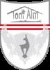 Toni Alm, Mittersill